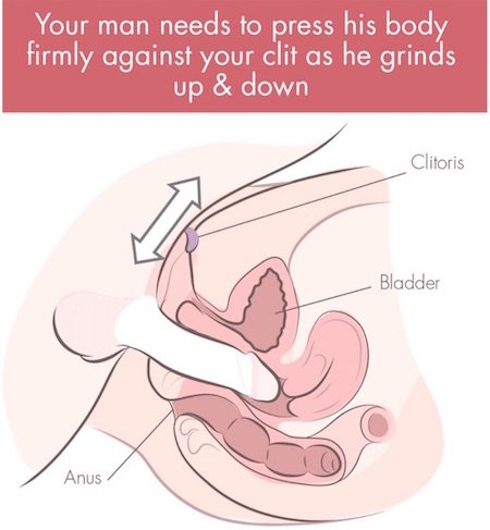 grinding on clitoris cross section illustration