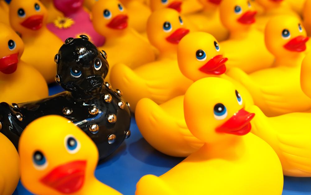 Different black rubber duck amongst yellow ducks