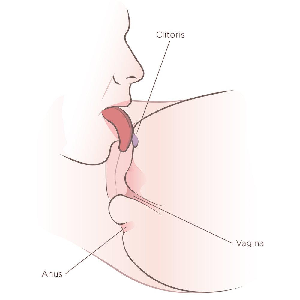 tongue licking the clitoris demonstrating how to eat a girl out